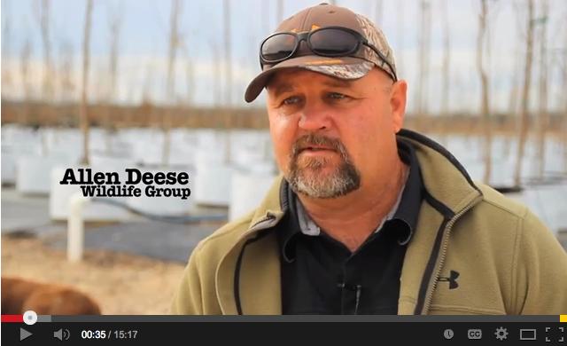 the_wildlife_group_allen_deese_video