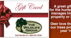 Gift Cards for the Deer or Turkey Hunter