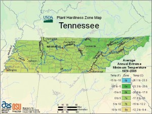 the_wildlife_group_hardiness_zones_tennessee