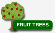 wildlife_group_fruit_trees_store