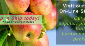 Shop Online for Fruit Trees and Hardwoods